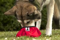 Gearflogger reviews the Rad Dog Pocket Bowl